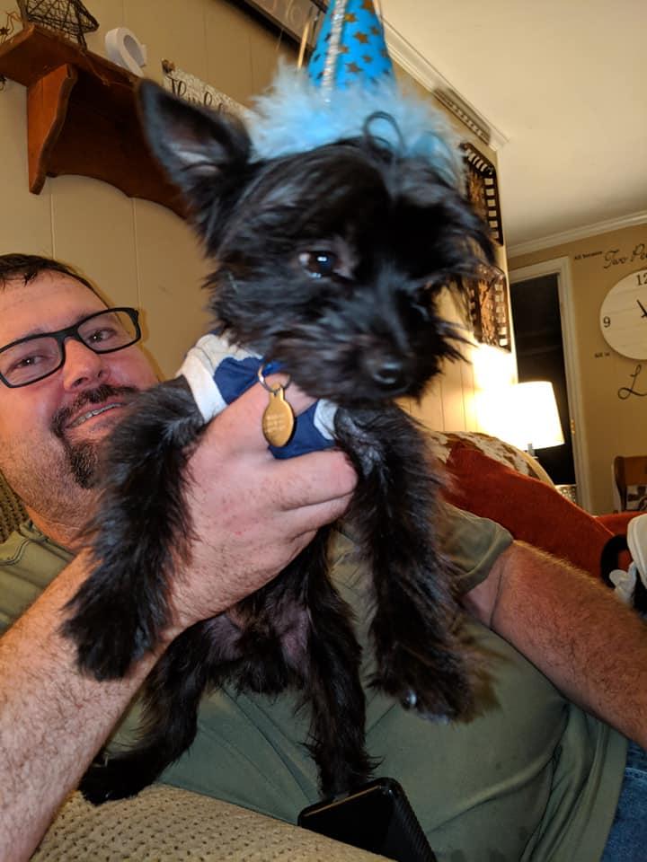 Bryan D Sellers Furbaby Dog Pet Furbabies