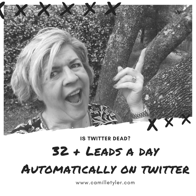 Get leads on Twitter ?