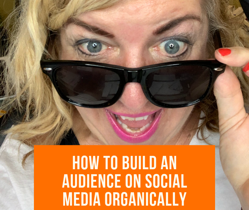 How To Build an Audience on Social Media Organically