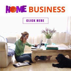 Http Www Soniahollis Com Online Business Ideas