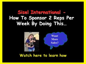 Sisel International