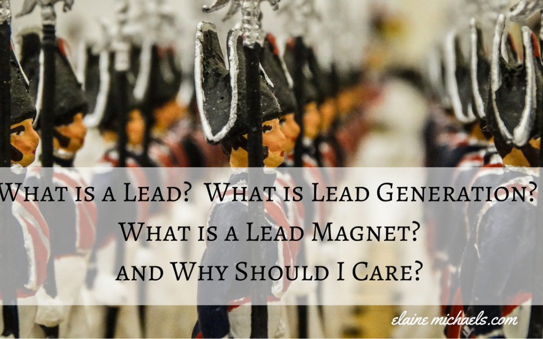What is a Lead? What is Lead Generation? and Lastly, What is a Lead Magnet?  Why Should I Care?