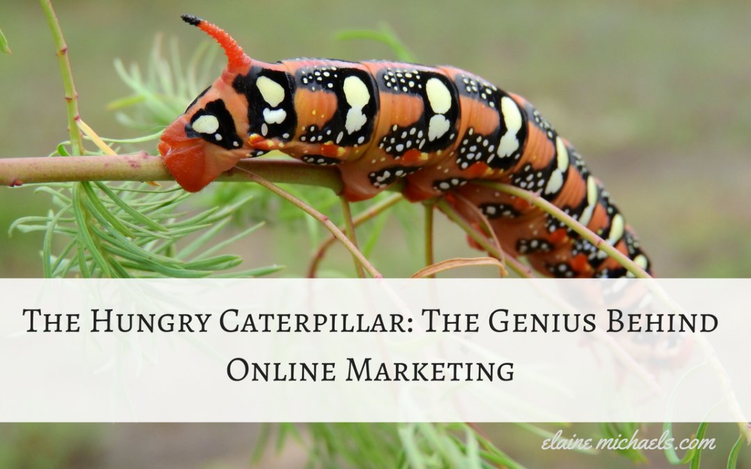The Hungry Caterpillar Teaches Evolution of Online Marketing