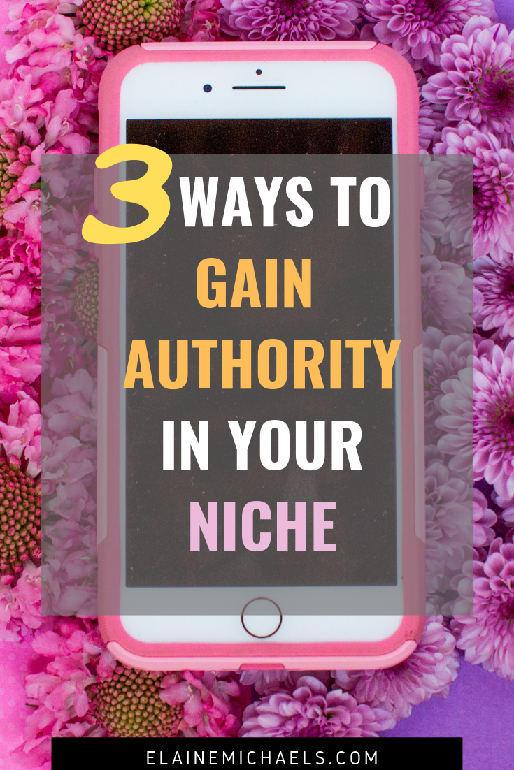 Ways to Gain Authority in Your Niche