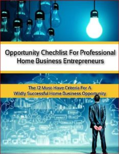 12 Point Checklist for Professional Home Business Entrepreneurs