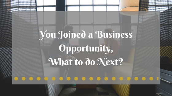 You Joined a Business Opportunity, What to do Next?