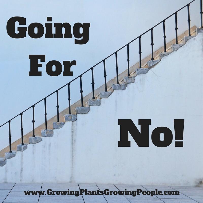 Going For No! • Robert Bob Stafford