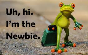 The Network Marketing Audience Newbie